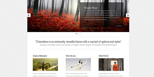 Un sito web camaleontico per cambiare pelle