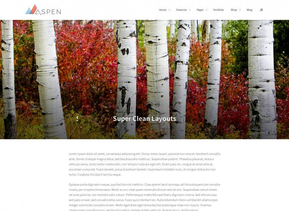 Realizzazione sito web elegante e multiuso
