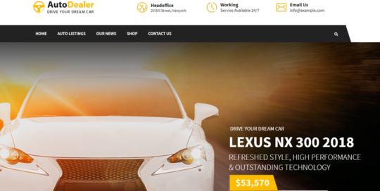 Sviluppo sito internet per acquisto vendita auto