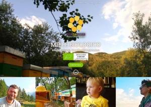 Promuovere il miele biologico in Italia con un sito web